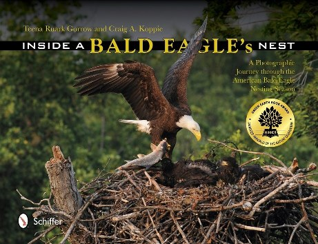 Inside the Bald Eagle's nest