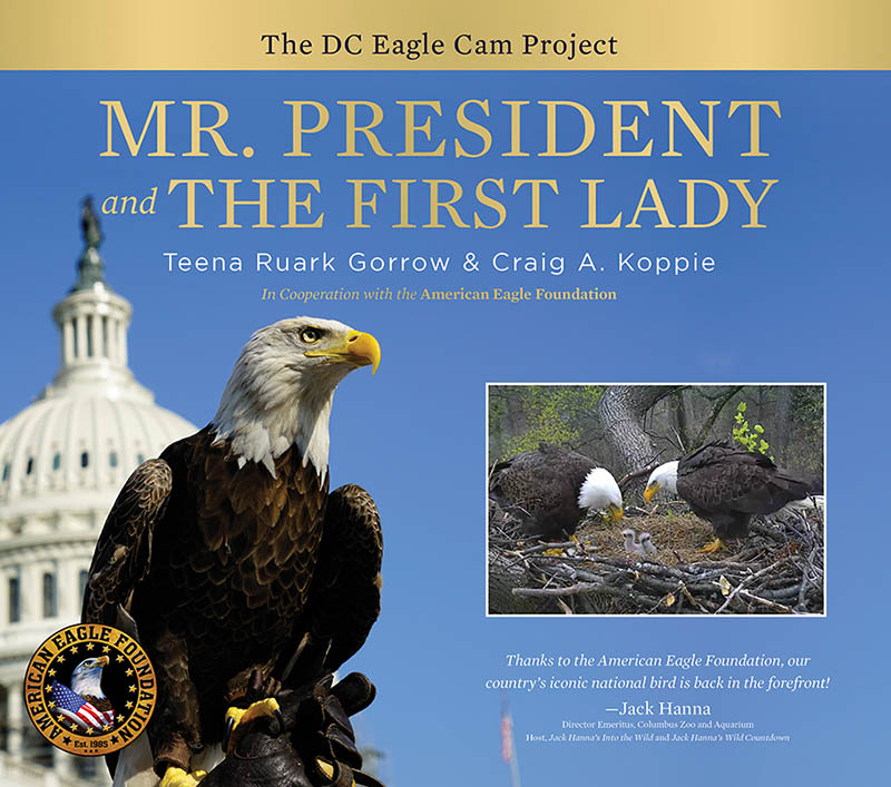 Mr. President and the First Lady book cover