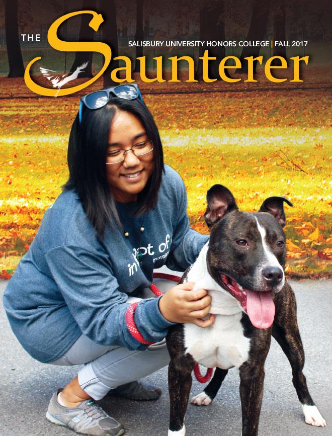 The Saunterer
