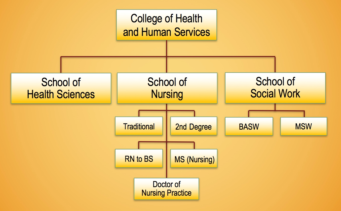 CHHS Structure